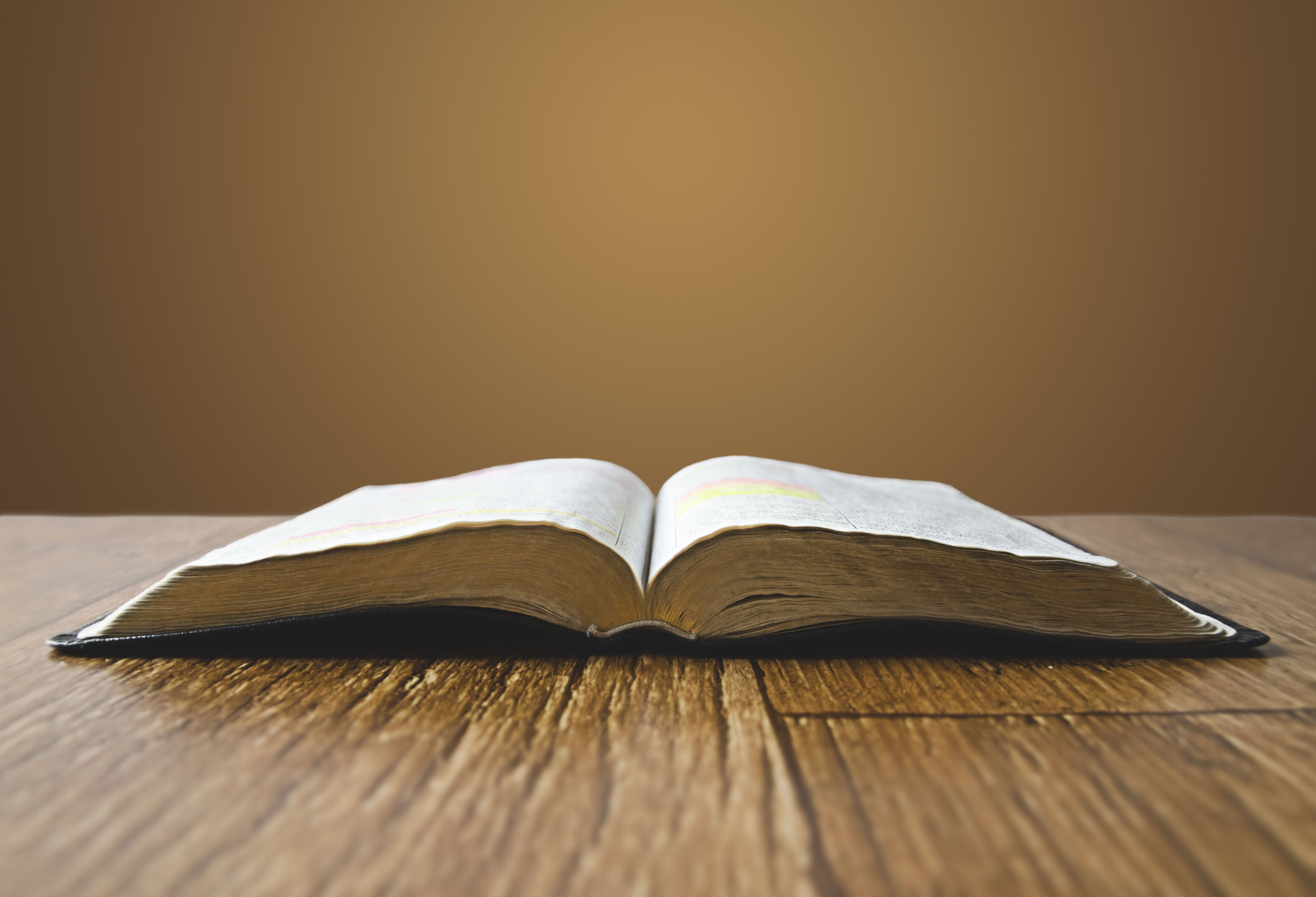 For the Bible Tells Me So: Biblical Authority Denied